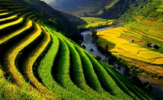 Ảnh đẹp Việt Nam đất nước ta ơi!!