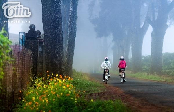 Đường đi học ởthông Biển Hồ chè